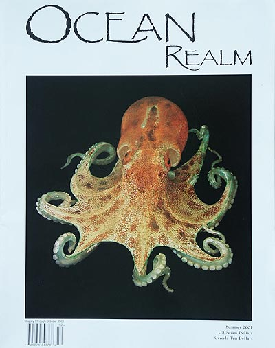 Glass Octopus model made circa 1885 by the Blaschkas, in the collection of Cornell University.